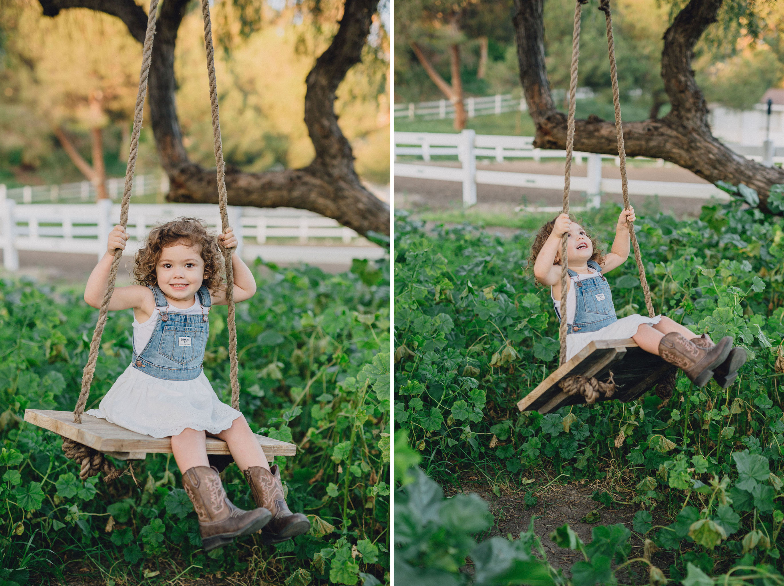 Tree Swing | Palos Verdes